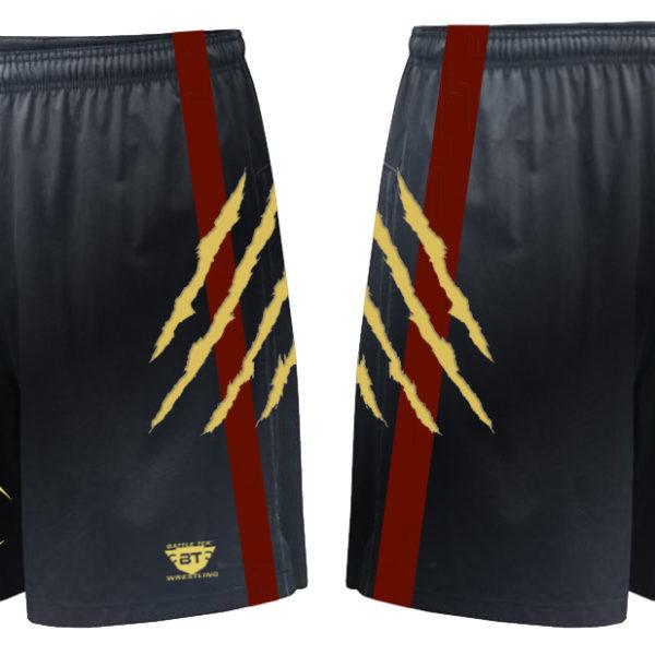 avon_grove_shorts_3_update